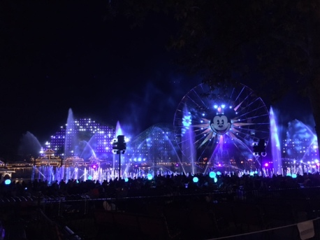 Premium Viewing area for World of Color